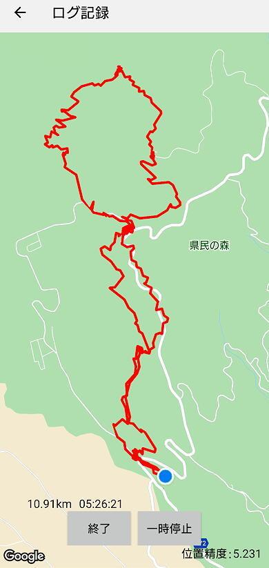 渋滞の日光を避けて栃木県民の森へ_d0137627_22383579.jpg