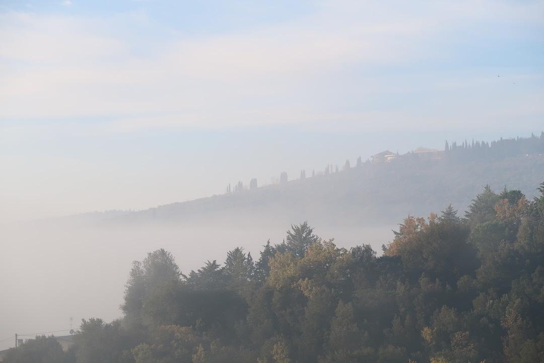 霧の秋夕空とカボチャ入りクリームシチュー_f0234936_06251113.jpeg