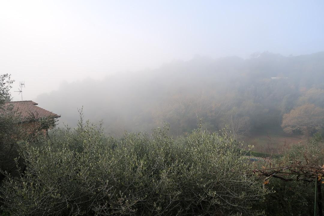 霧の秋夕空とカボチャ入りクリームシチュー_f0234936_06272284.jpeg