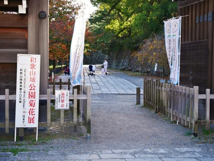 和歌山城公園菊花展  2020-11-28 00:000_b0093754_22523282.jpg