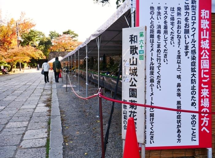 和歌山城公園菊花展  2020-11-28 00:000_b0093754_22524307.jpg