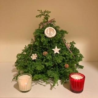 生徒様から届いた「tree& リース」画像_c0152002_08175889.jpeg