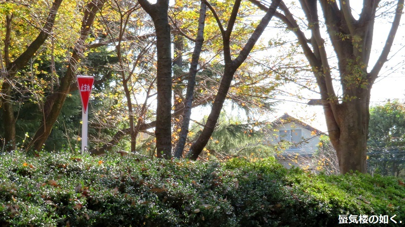 「おちこぼれフルーツタルト」舞台探訪05第5話「ほんのりストーカー?」小金井市・小平市_e0304702_09221960.jpg