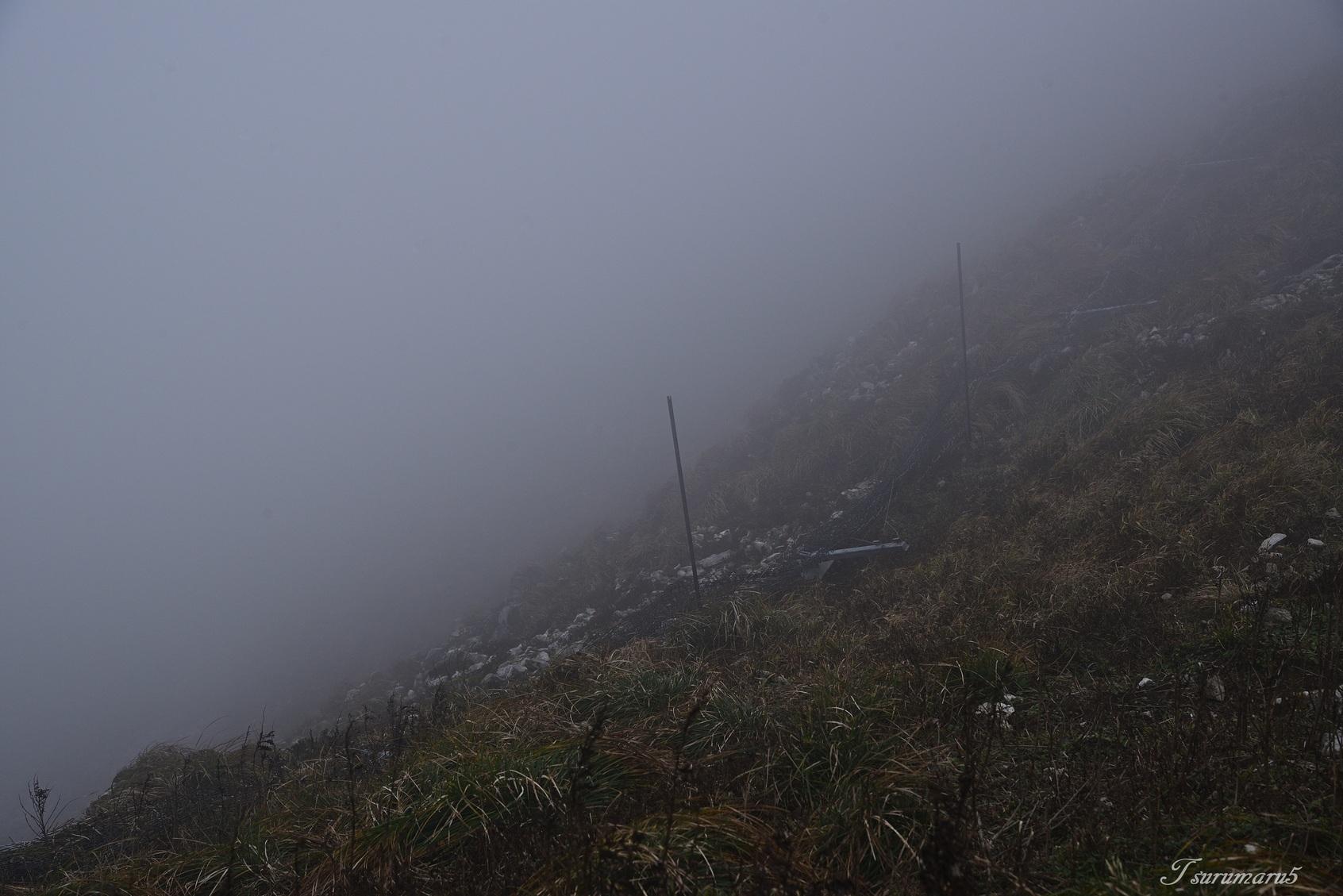 伊吹山へ_e0358534_23150006.jpg