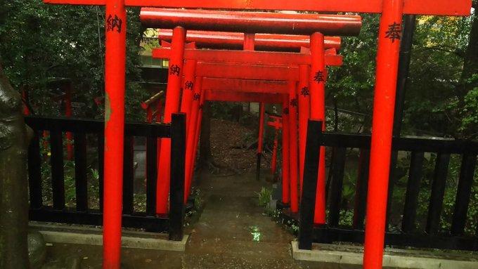 【FOX】キツネの江戸と東京、不思議と信心と消滅とさわり【FOX】_b0116271_00173109.jpg