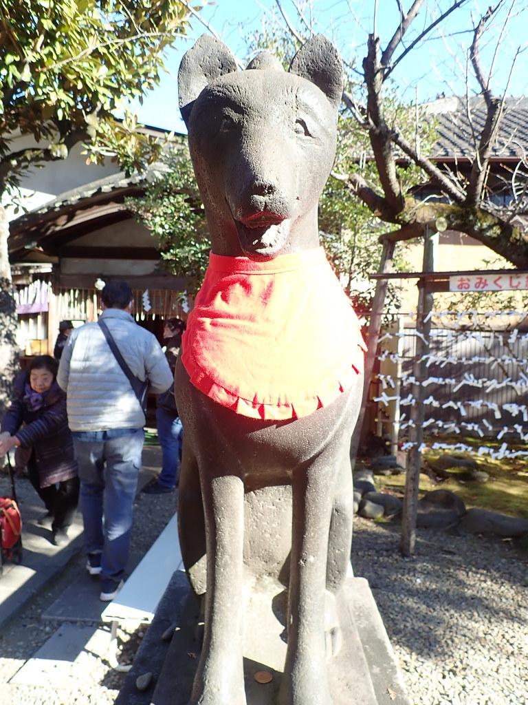 【FOX】キツネの江戸と東京、不思議と信心と消滅とさわり【FOX】_b0116271_13511524.jpg