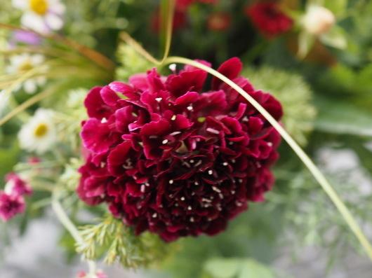 フラワーデザイン ロマンチックな花束_d0281783_09384761.jpg