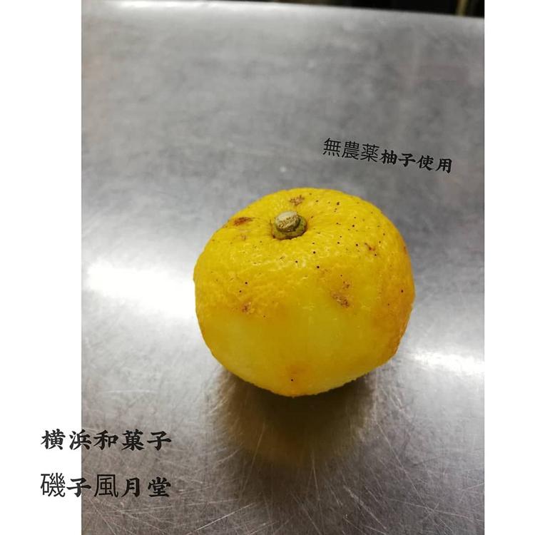 ゆず きんとん が出来ました。 横浜和菓子 磯子風月堂_e0092594_18245589.jpg