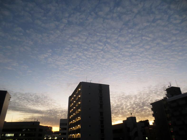 ■雲と空と──週替わりの夕暮れ[11/21・29]_d0190217_21081483.jpg