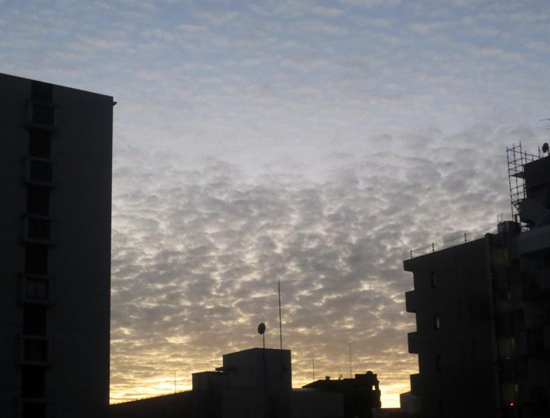 ■雲と空と──週替わりの夕暮れ[11/21・29]_d0190217_21082922.jpg