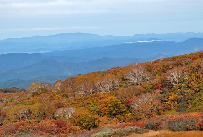 鳥海山ツーリング  竜が原湿原と栗駒山_e0362634_17452259.jpg