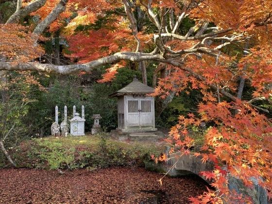 紅葉前線南下中 福島県宝蔵寺_c0261447_10465471.jpg