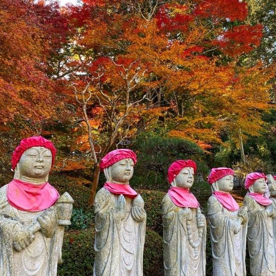 紅葉前線南下中 福島県宝蔵寺_c0261447_10471667.jpg