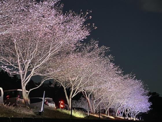 紅葉前線南下中 福島県宝蔵寺_c0261447_10541109.jpg