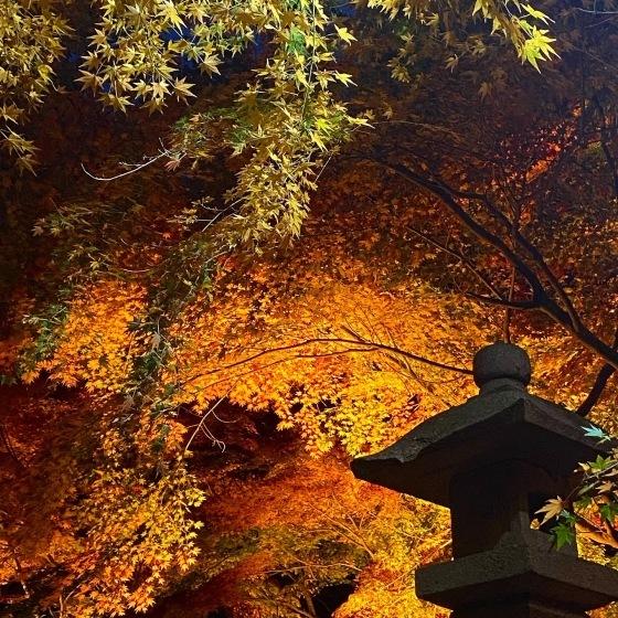 紅葉前線南下中 福島県宝蔵寺_c0261447_10561958.jpg