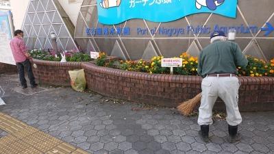 ガーデンふ頭総合案内所前花壇の植替えR2.11.16_d0338682_17001079.jpg