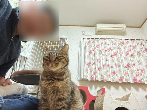 マツコと自撮り 〜旦那編〜_a0216583_23520978.png