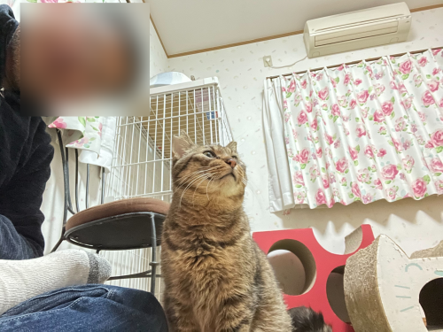 マツコと自撮り 〜旦那編〜_a0216583_23521596.png