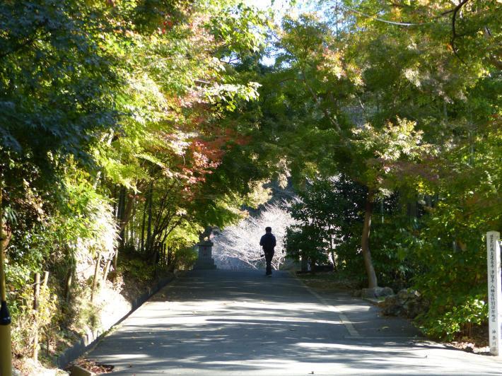 鎌倉散策11月 建長寺_f0296312_11500729.jpg