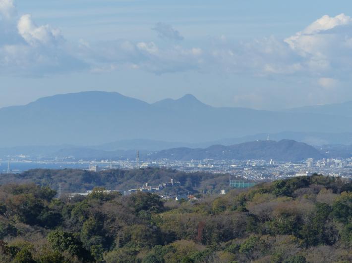 鎌倉散策11月 建長寺_f0296312_16511802.jpg