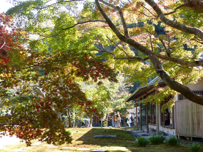 鎌倉散策11月②  長寿寺_f0296312_19254847.jpg