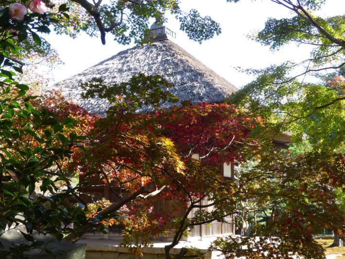 鎌倉散策11月②  長寿寺_f0296312_19254914.jpg