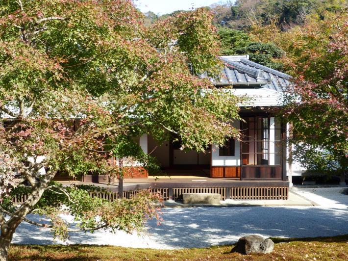 鎌倉散策11月②  長寿寺_f0296312_19282708.jpg