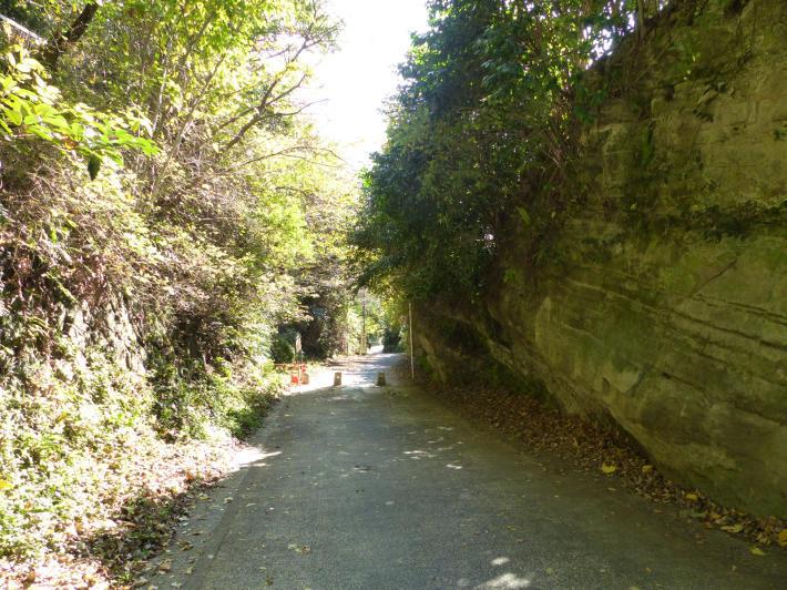 鎌倉散策③ 亀ヶ谷坂切通と寿福寺トンネル_f0296312_22422763.jpg