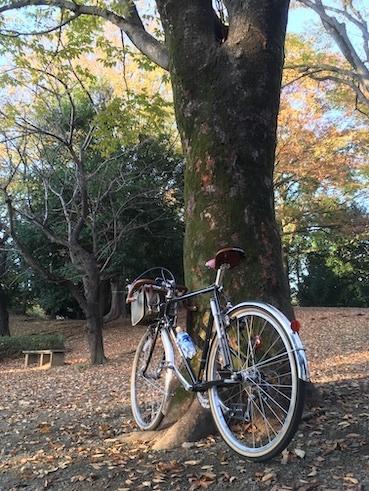 野川サイクリング_c0016913_14025024.jpeg