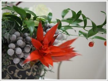 落ち着いた色合いでクリスマス花_e0151254_09514777.jpg