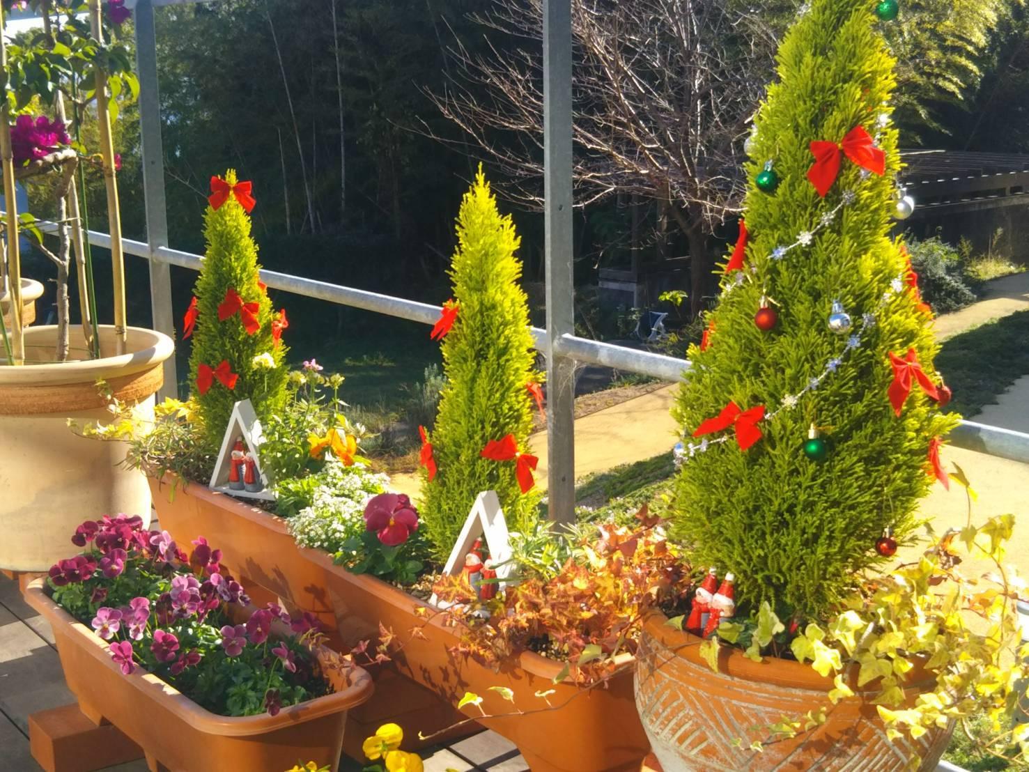 もうすぐクリスマス_f0299108_15413235.jpg