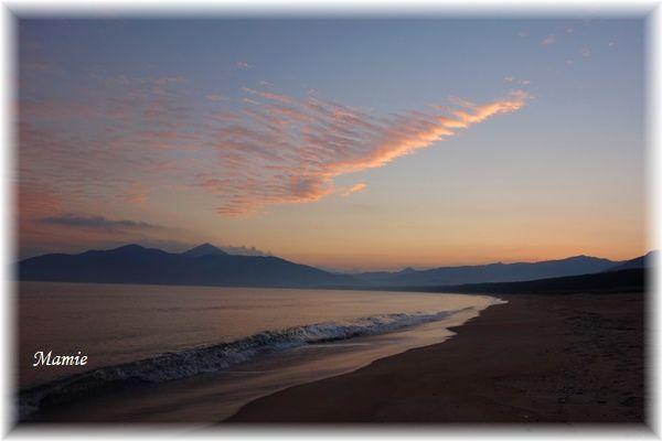 海辺の朝散歩 GTK⑦_d0387712_14324696.jpg