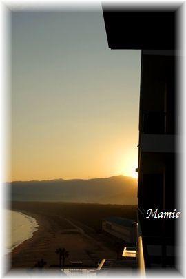 海辺の朝散歩 GTK⑦_d0387712_14451849.jpg