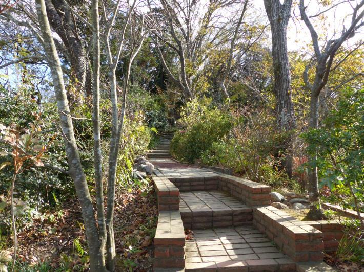 鎌倉散策④ 天空のカフェ_f0296312_18381989.jpg