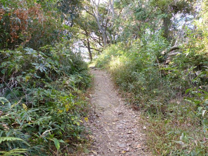 鎌倉散策⑤   大仏ハイキングコース_f0296312_19140839.jpg