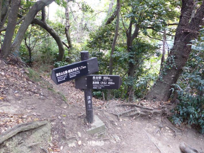 鎌倉散策⑤   大仏ハイキングコース_f0296312_19141284.jpg
