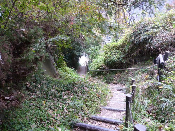 鎌倉散策⑤   大仏ハイキングコース_f0296312_19175930.jpg