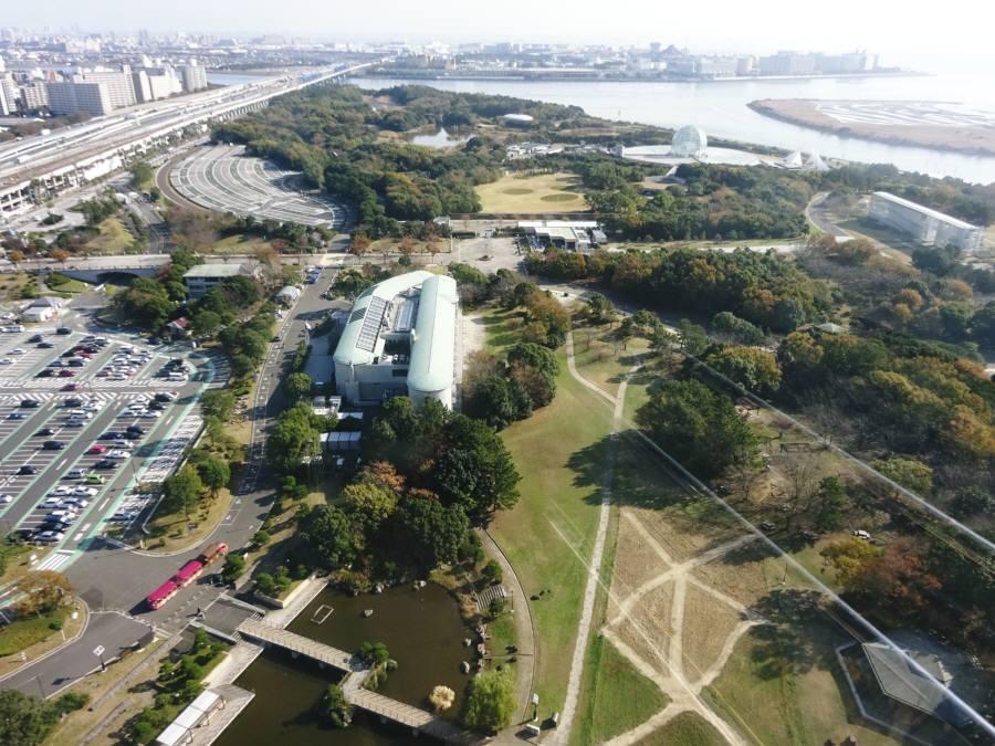 葛西臨海公園と葛西海浜公園_f0059673_22351151.jpg