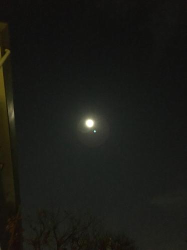 満月_c0201876_11272663.jpg