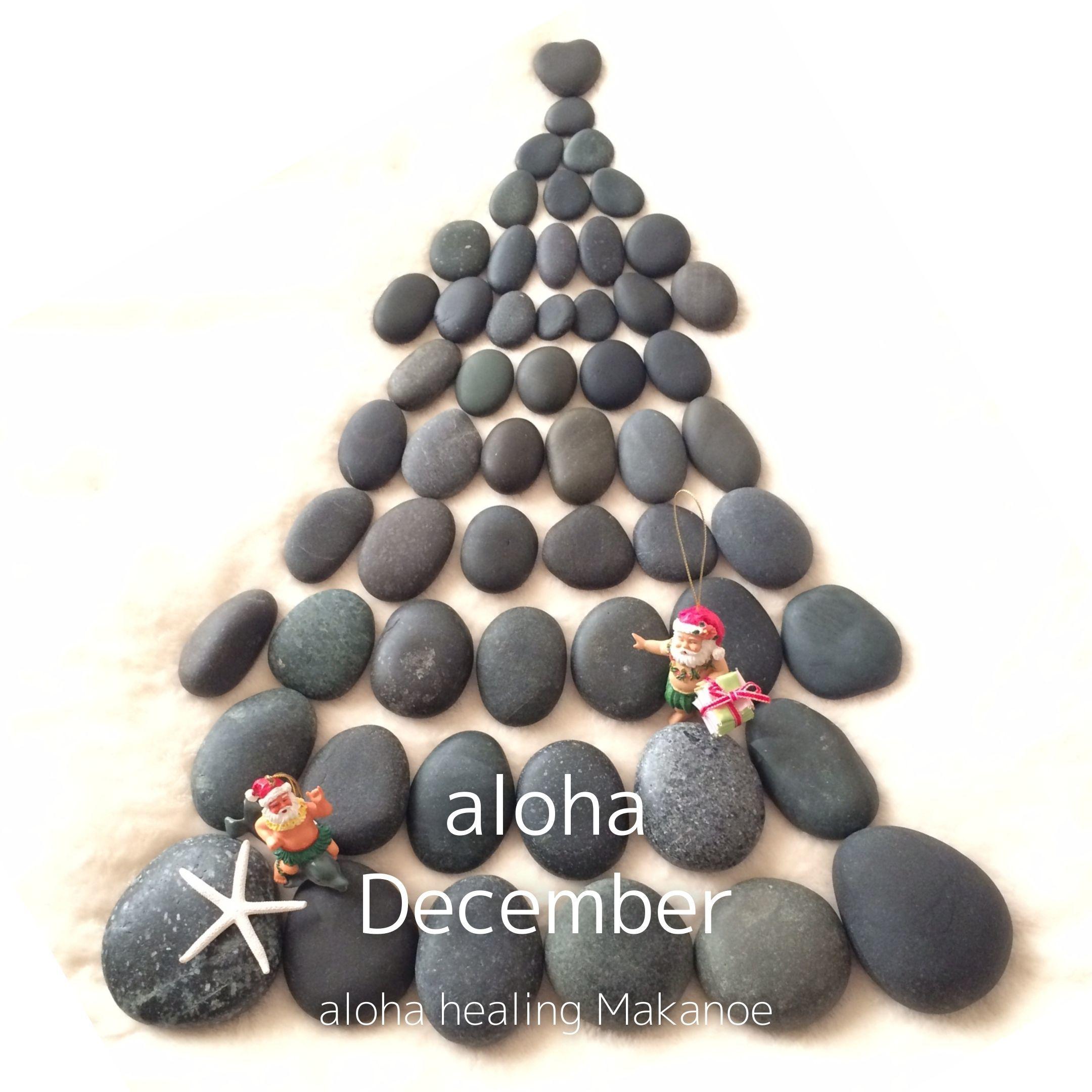 ご予約状況【12月】_a0293109_16441755.jpg