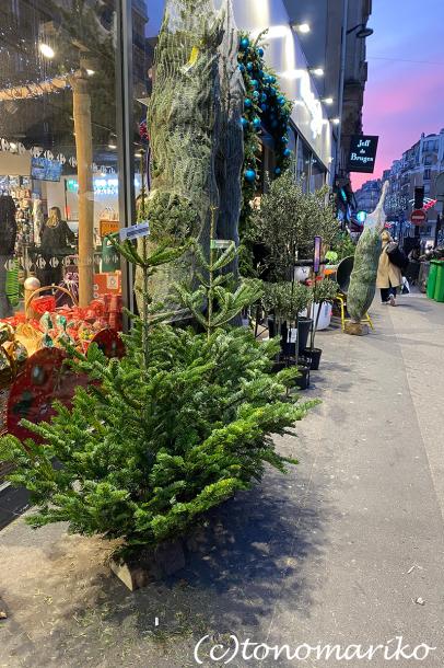 どんどんクリスマスに近づく_c0024345_04310456.jpg