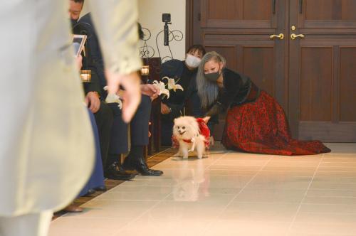 長男香輔とお嫁さんの嘉代さんの結婚式でした!_e0248949_23191318.jpg