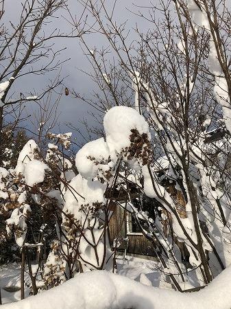降られましたねぇ・・札幌はゼロなのに・・。_d0251572_18214052.jpg