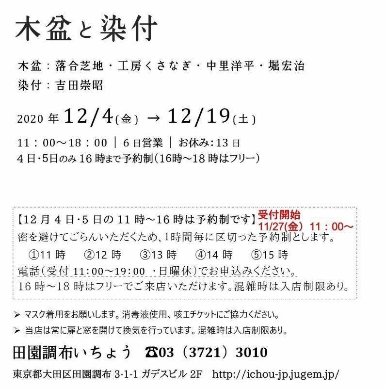 2020 12月 田園調布いちょう_c0235504_21000872.jpg