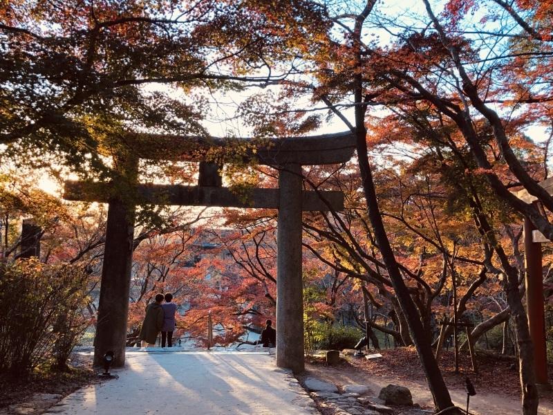 竈門神社の秋_d0116009_02503748.jpg