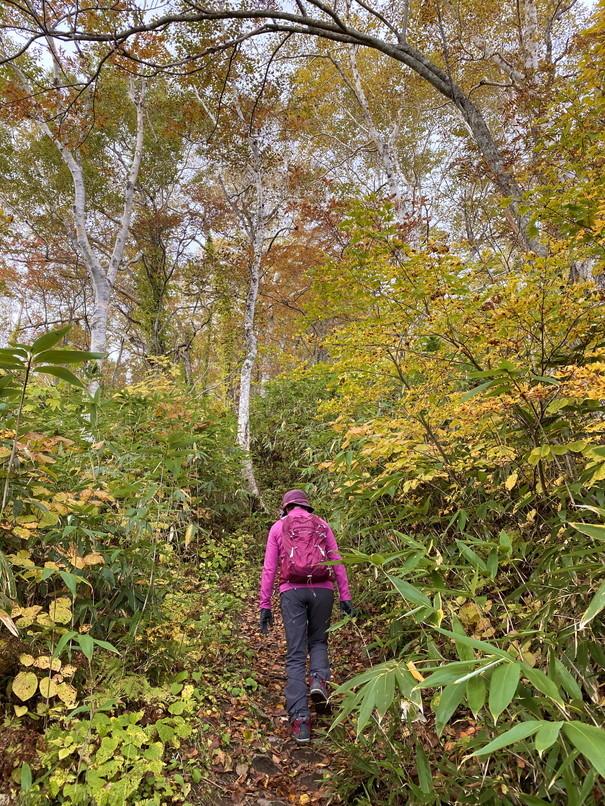 """2020年10月 『秋の羊蹄山、女心と秋の空』 October 2020 \""""Mt Yotei in the Autumn\""""_c0219616_12120589.jpg"""