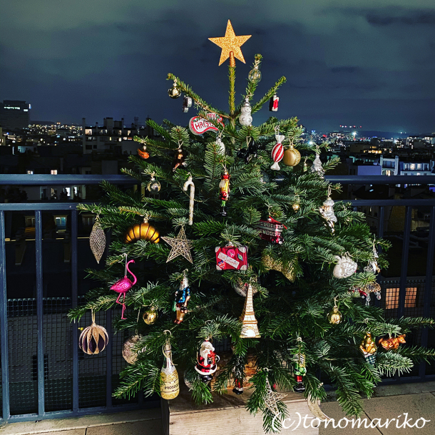 雨風に打ち勝て!我が家のクリスマスツリー大作戦_c0024345_19264263.jpg