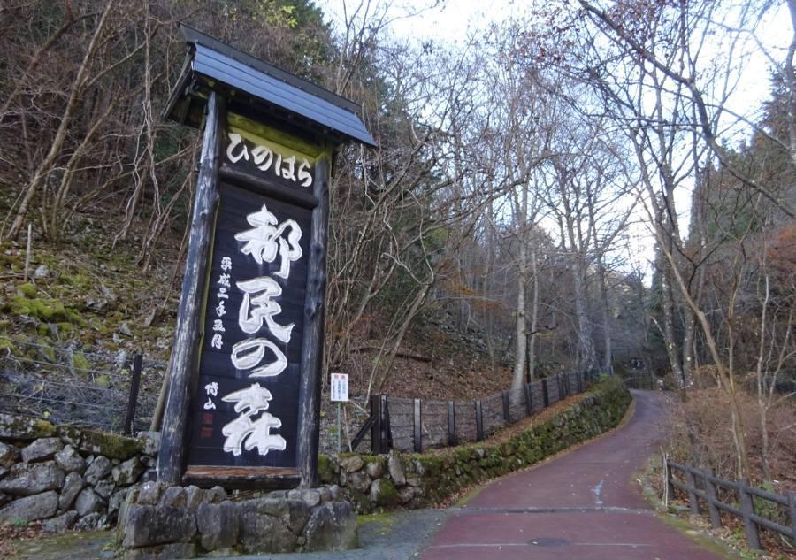 東京都檜原都民の森ほかの指定管理者の指定_f0059673_18384395.jpg