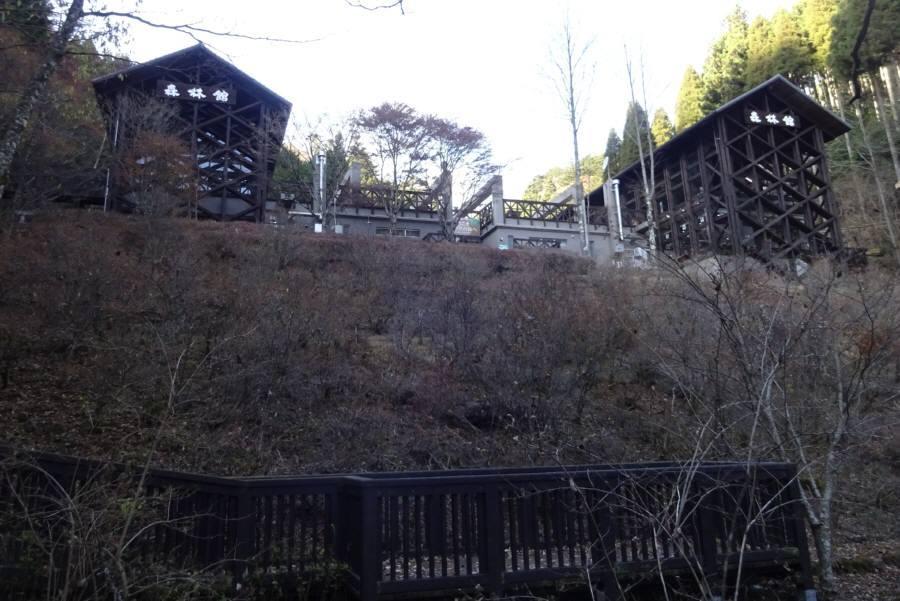 東京都檜原都民の森ほかの指定管理者の指定_f0059673_18413477.jpg