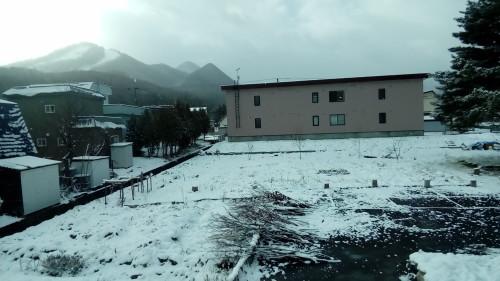 パラリン小雪たちのおしゃべり_c0220170_17273943.jpg